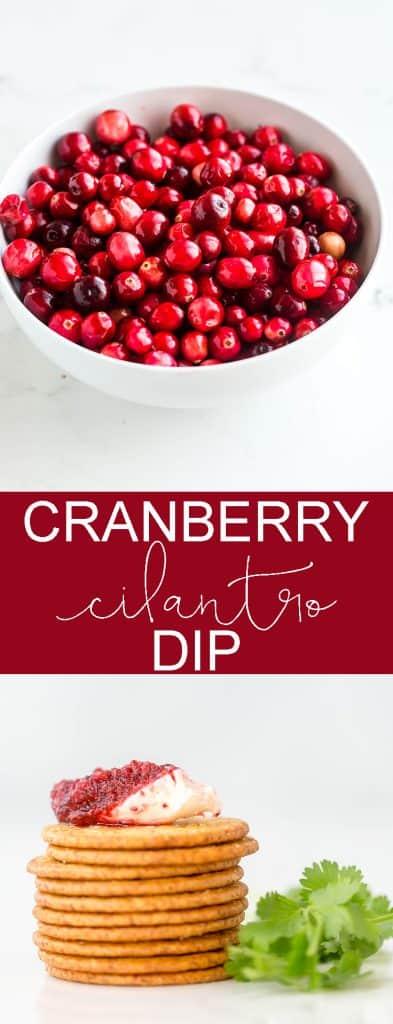 Cranberry Cilantro Dip #cranberries #dip #recipes #deliciousfood #foodphotography