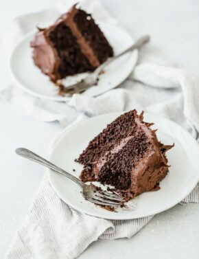 Two slices of double layered chocolate cake on a white plate, with a fork on the plate.