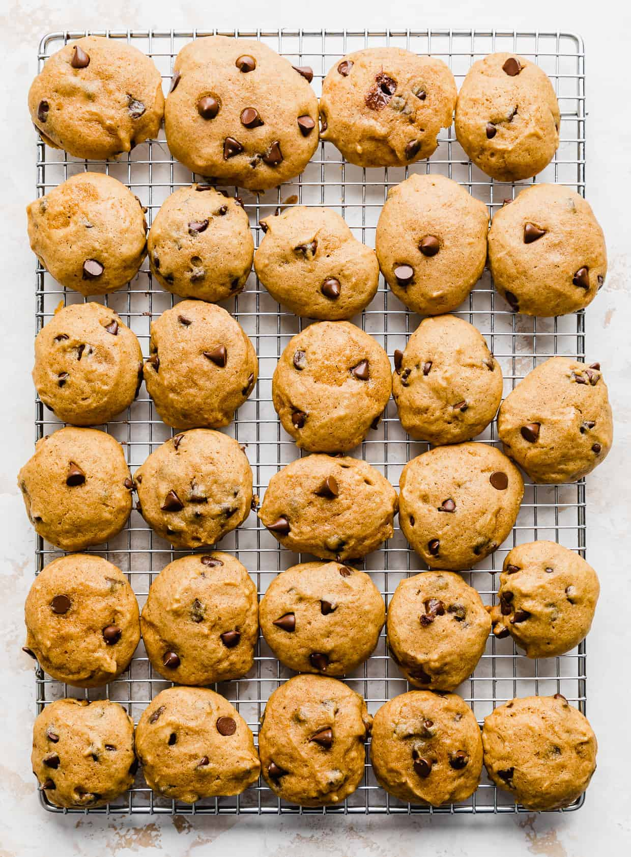Pumpkin Chocolate Chip Cookies on a wire rack on a white background.