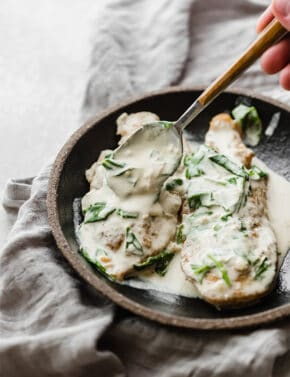 Two chicken breasts topped with a creamy dijon mustard chicken sauce.