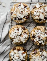 Overhead photo of baked oatmeal cups topped with coconut and sliced almonds.