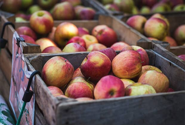 Several boxes full of apples