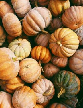 Green and orange pumpkins.