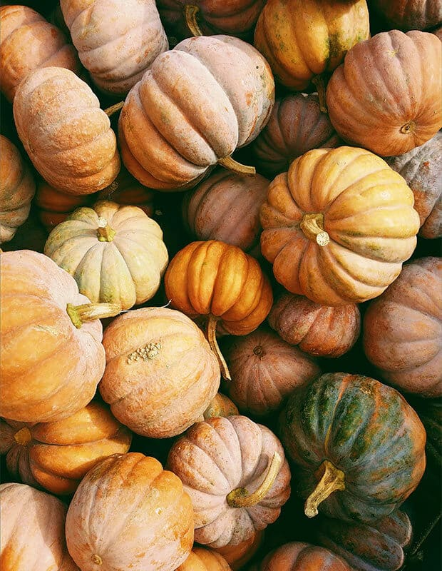 Green and orange pumpkins.
