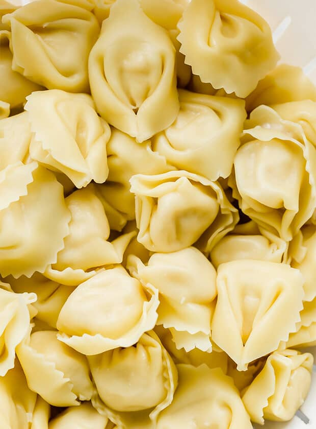 Close up photo of cooked tortellini.