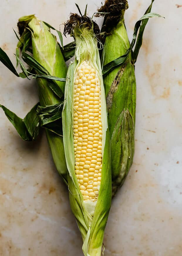 A corn on the cob with the front part of the husk ripped open exposing the yellow kernels.
