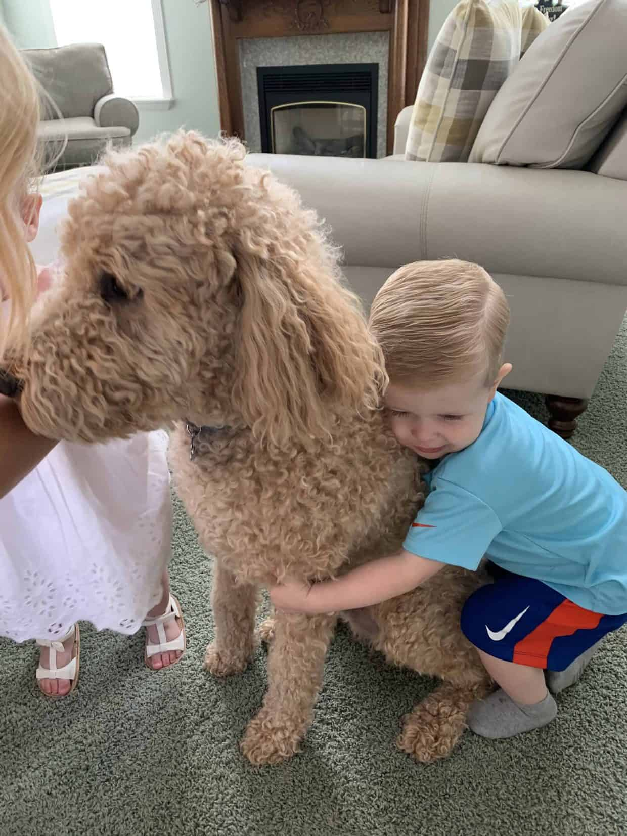 A young boy hugging a dog.