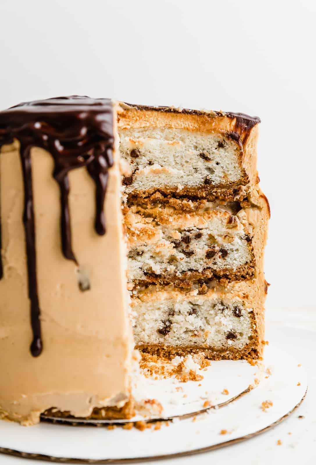 A 7 Layer Bar Cake showcasing the graham cracker crust and 3 layers of white cake and mini chocolate chips.